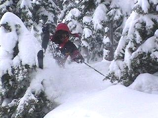 Getting tight in the trees of Dom at Alpental. (skier: Jay Silveira, photo: Scott Bly/J&E Productions)