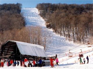 Bumps line Plattekill's signature Blockbuster trail from wall to wall. (photo courtesy Ski Plattekill)