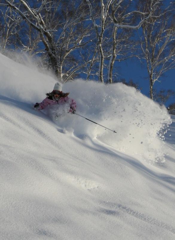 Skiing Niseko's famed powder (photo: NPB)