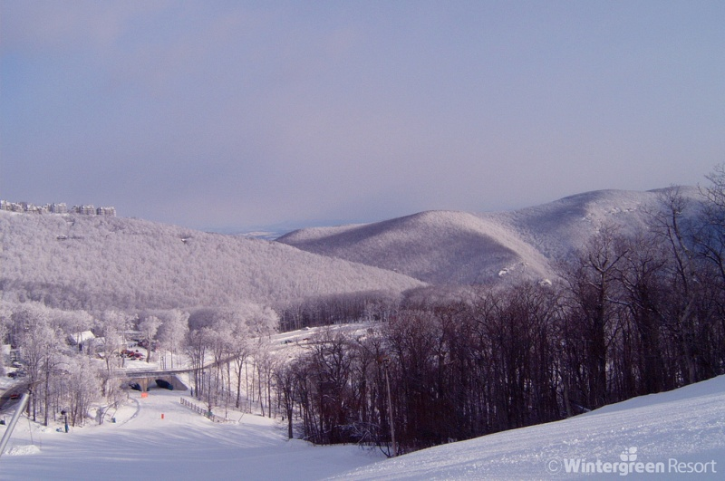 Virginia's Wintergreen Resort Settles Conservation Lawsuit