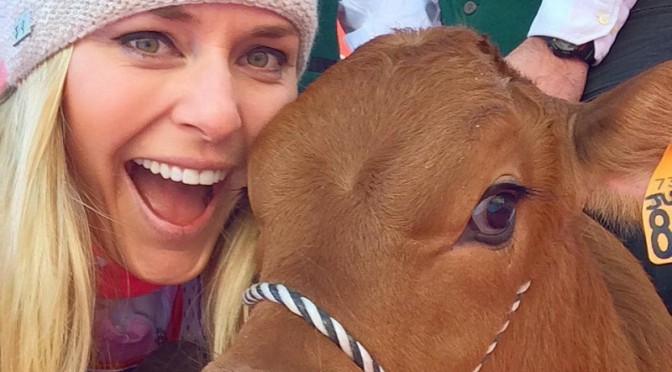 In taking the World Cup downhill win in Val d'Isere, France on Saturday, American ski racer Lindsey Vonn also won a baby cow, naming it Winnie. (photo: Facebook)