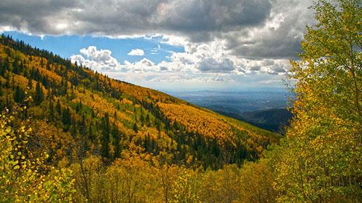 (file photo: Santa Fe National Forest)