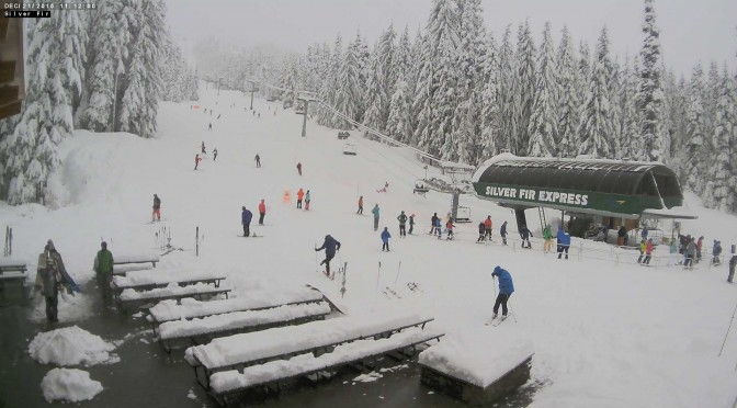 The Silver Fir area on Monday morning. (image: Summit at Snoqualmie)