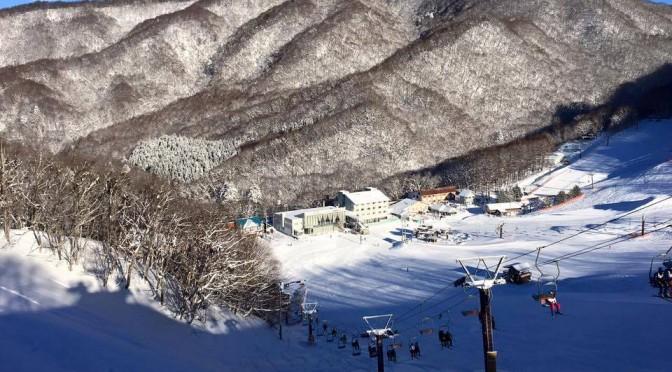 Skier Dies in Japan Avalanche