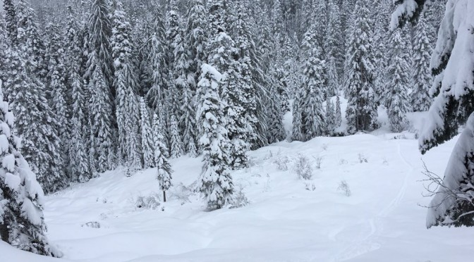 Lost Snowboarder Spends Two Nights Near Mt. Baker