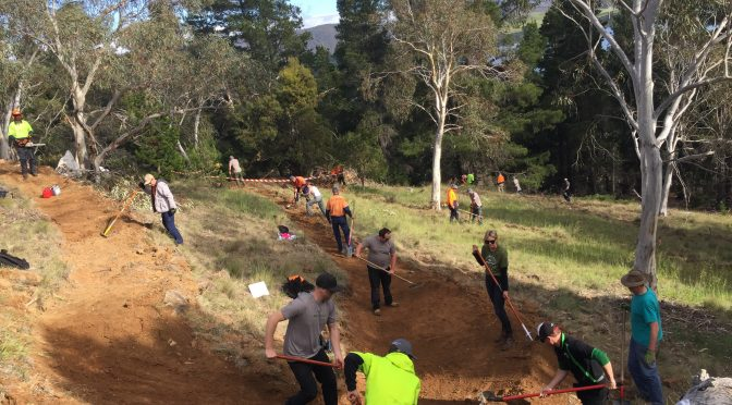 Perisher Staff Dive Into Community Service